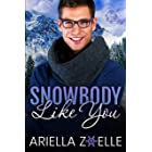 Snowbody Like You: An Insta Love Gay Romance (Suite Dreams Book 1)