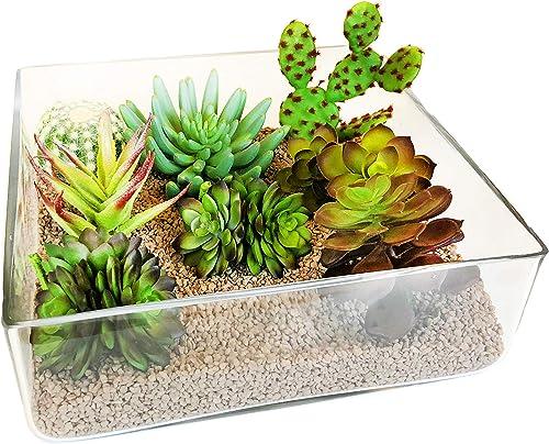 CYS EXCEL Rectangular Glass Vase, Block Vase, Flower Vase, Rectangle Vases for Centerpieces, Glass Square Terrariums, Pack of 1 H 4 Open 12 x12