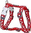Red Dingo Desinger Dog Harness, White Spots on Red (12mm x Neck: 25-39cm / Body 30-44cm) XS