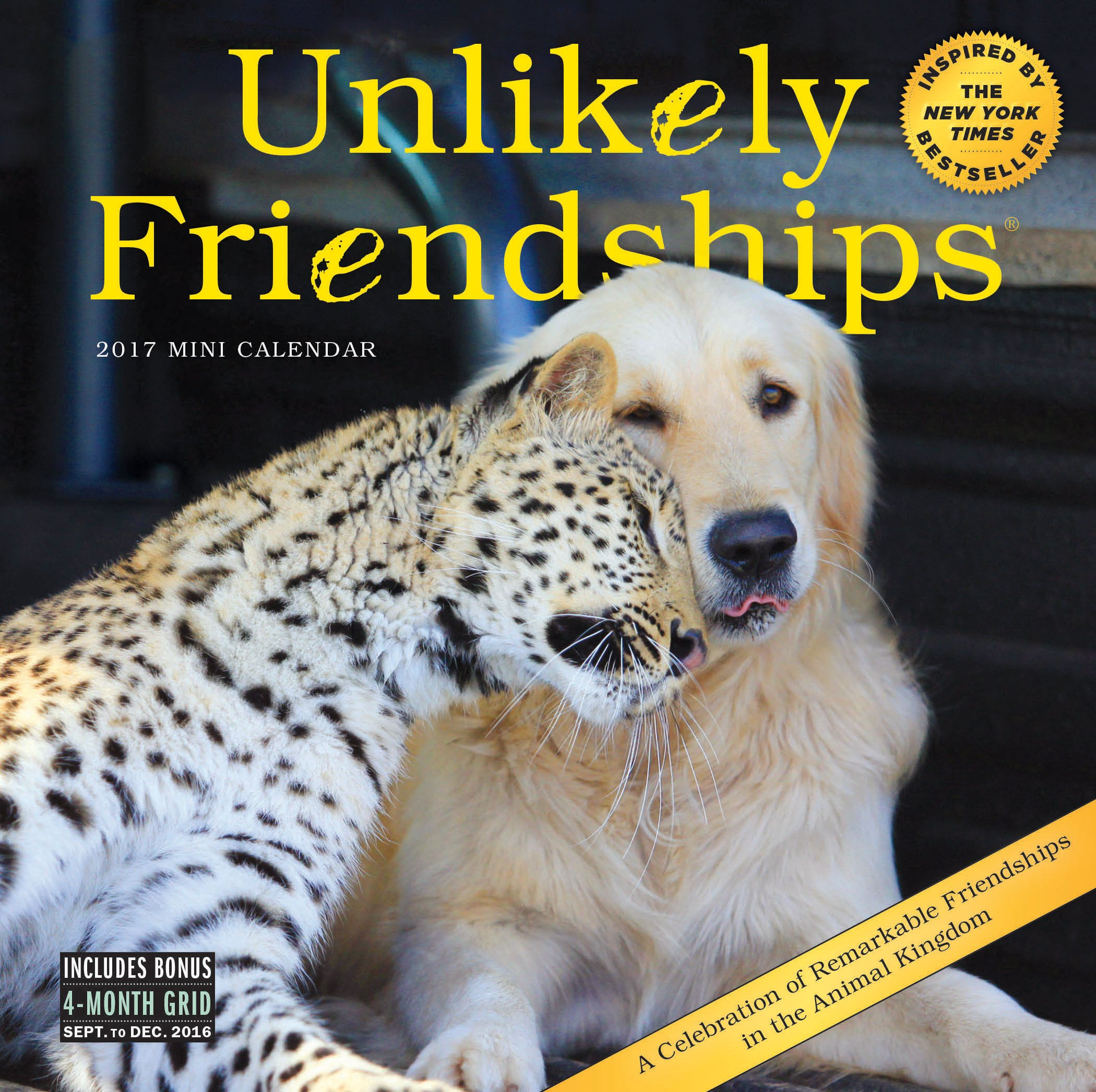Unlikely Friendships Mini Wall Calendar product image
