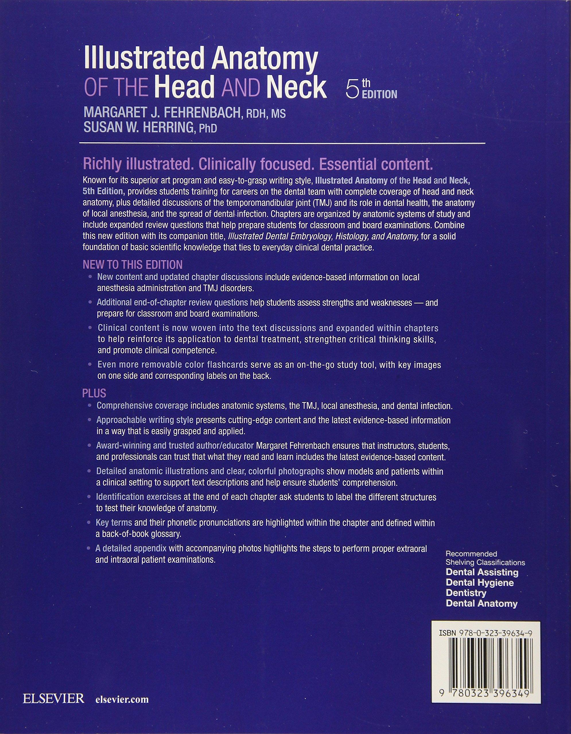 Illustrated Anatomy of the Head and Neck, 5e: Amazon.co.uk: Margaret ...