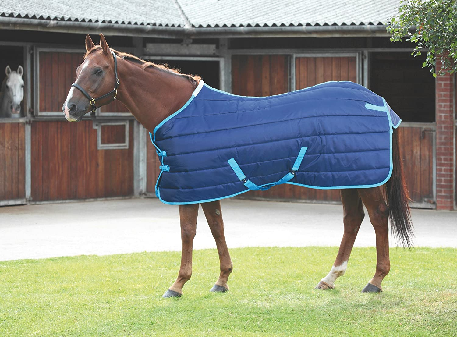 Navy bluee 69 Navy bluee 69 Shires Tempest 200G Stable Blanket