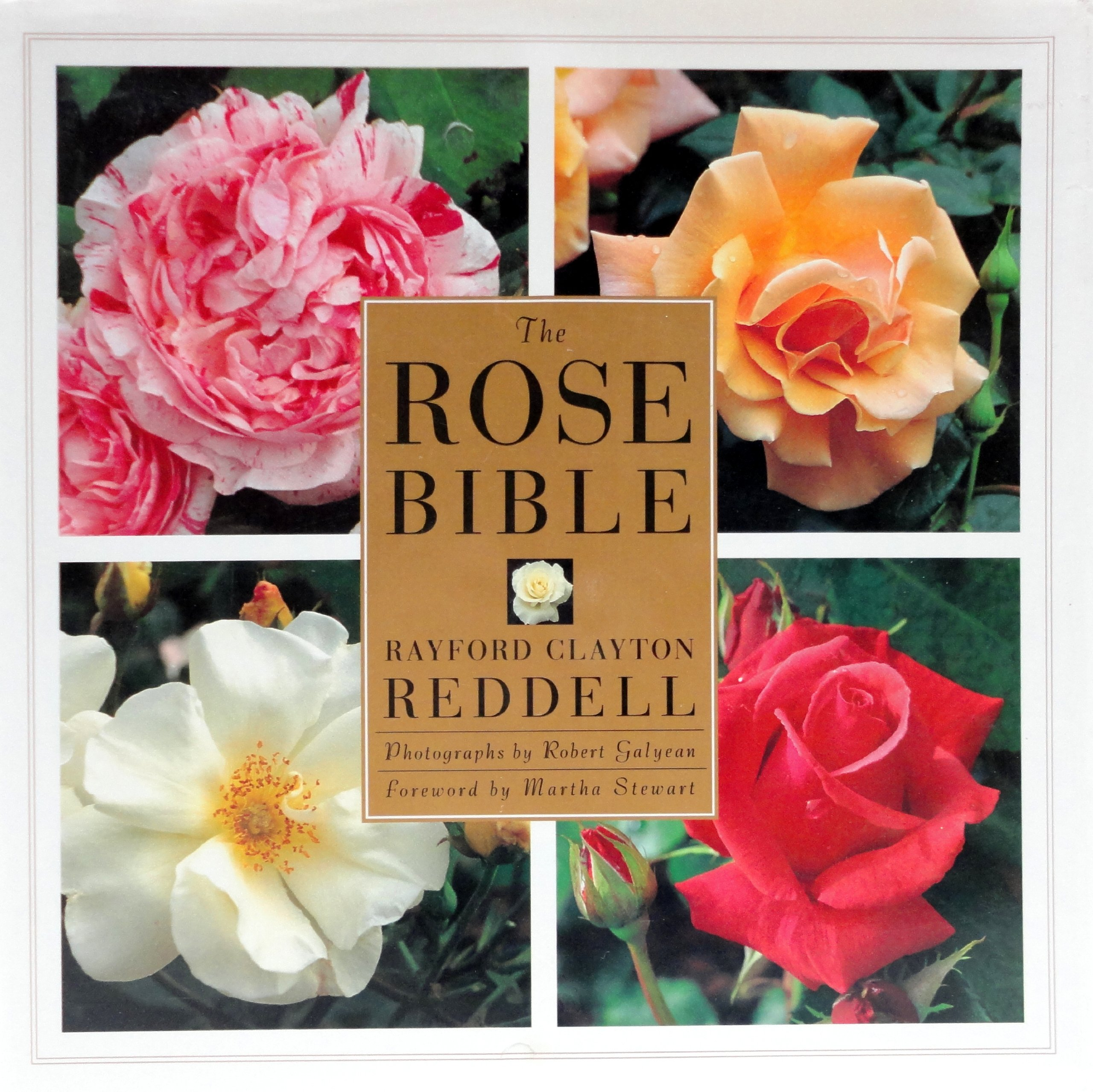The Rose Bible, Reddell, Rayford C.