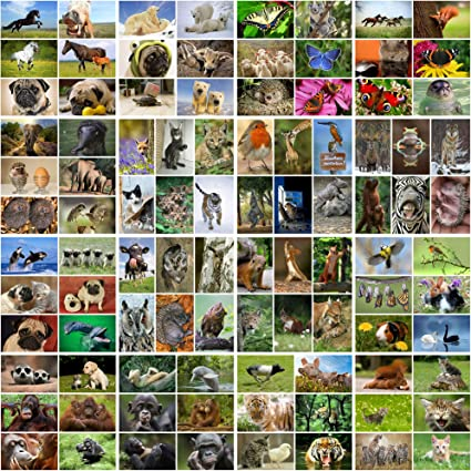 100 tarjetas postales