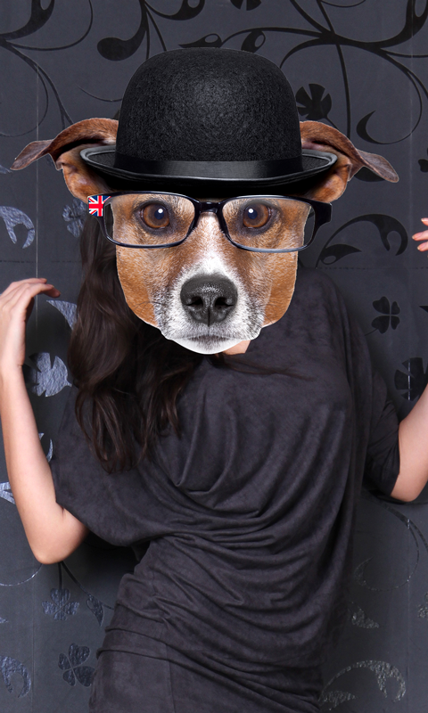 Montaje de la foto de la cara del perro: Amazon.es