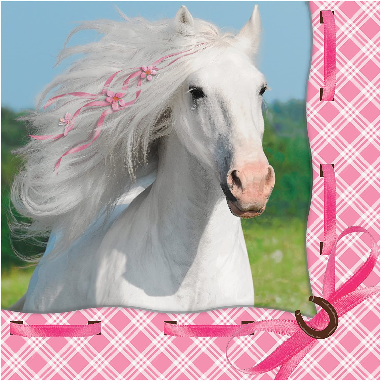 Creative Converting 16 Count Heart My Horse 3-Ply Beverage Napkins, White/Pink, 655601
