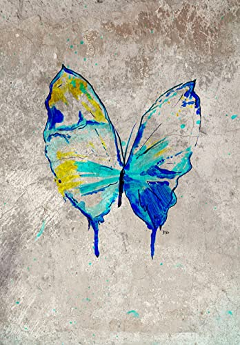 Amazon Butterfly Blue And Gray Home Decor Anniversary Love