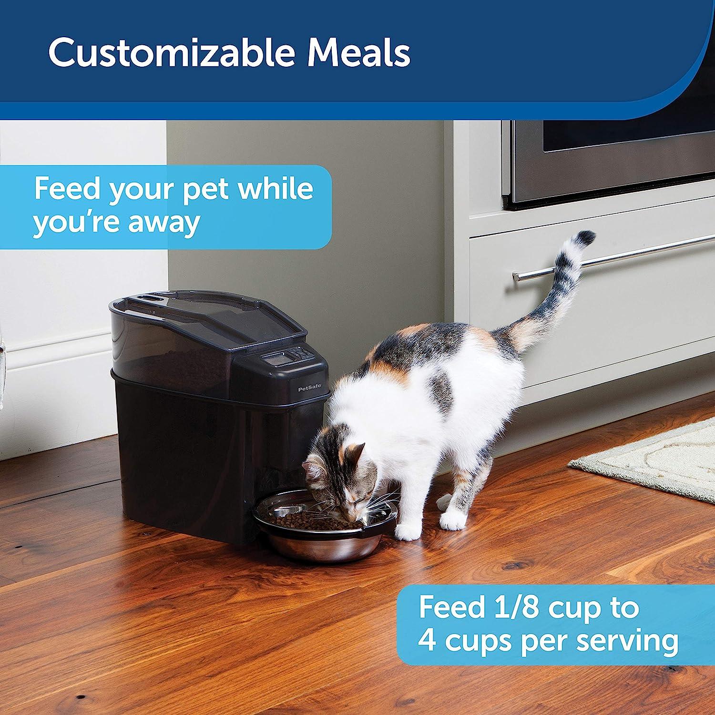 PetSafe Healthy Pet Simply Feed Power Adapter : Pet Supplies