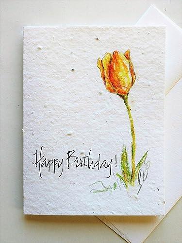 Amazon original hand painted tulip on a plantable greeting card original hand painted tulip on a plantable greeting card with your choice of greeting m4hsunfo