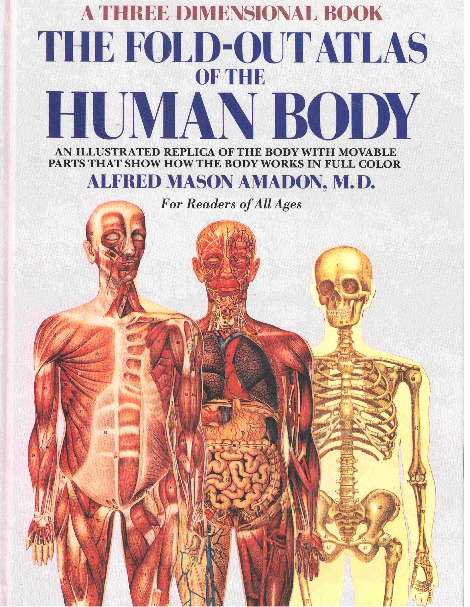 The Fold Out Atlas Of The Human Body A Three Dimensional Book