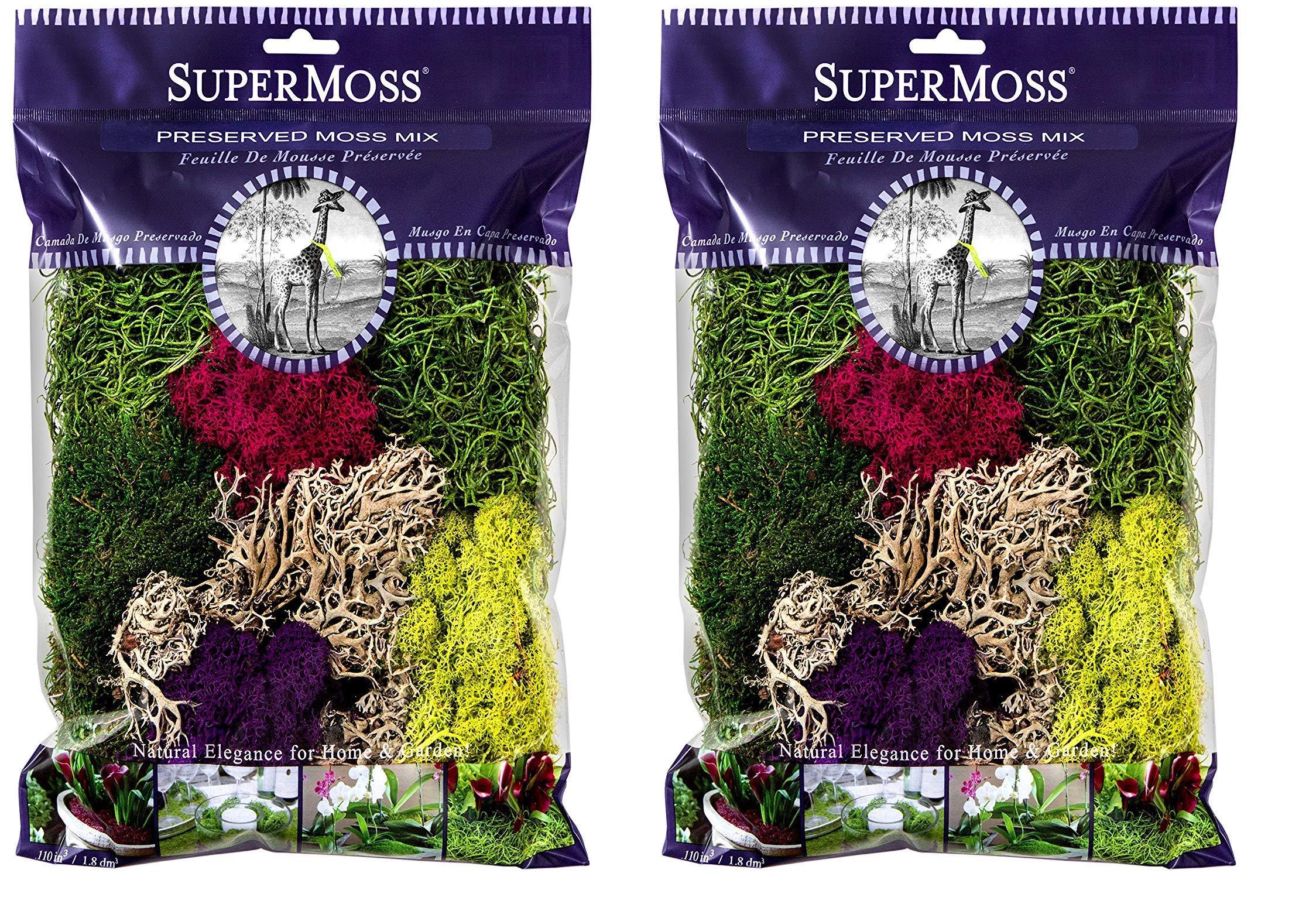 SuperMoss (23312) Moss Mix Preserved, 8oz (Twо Pаck, 0)