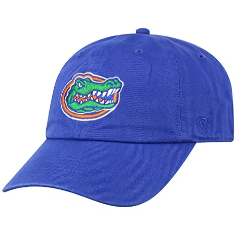 best service 369be dfb06 Top of the World NCAA Florida Gators Men s Adjustable Relaxed Fit Team Icon  Hat, Royal