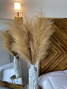 Bossy Baby Faux Pampas Grass - Large - Fluffy 43