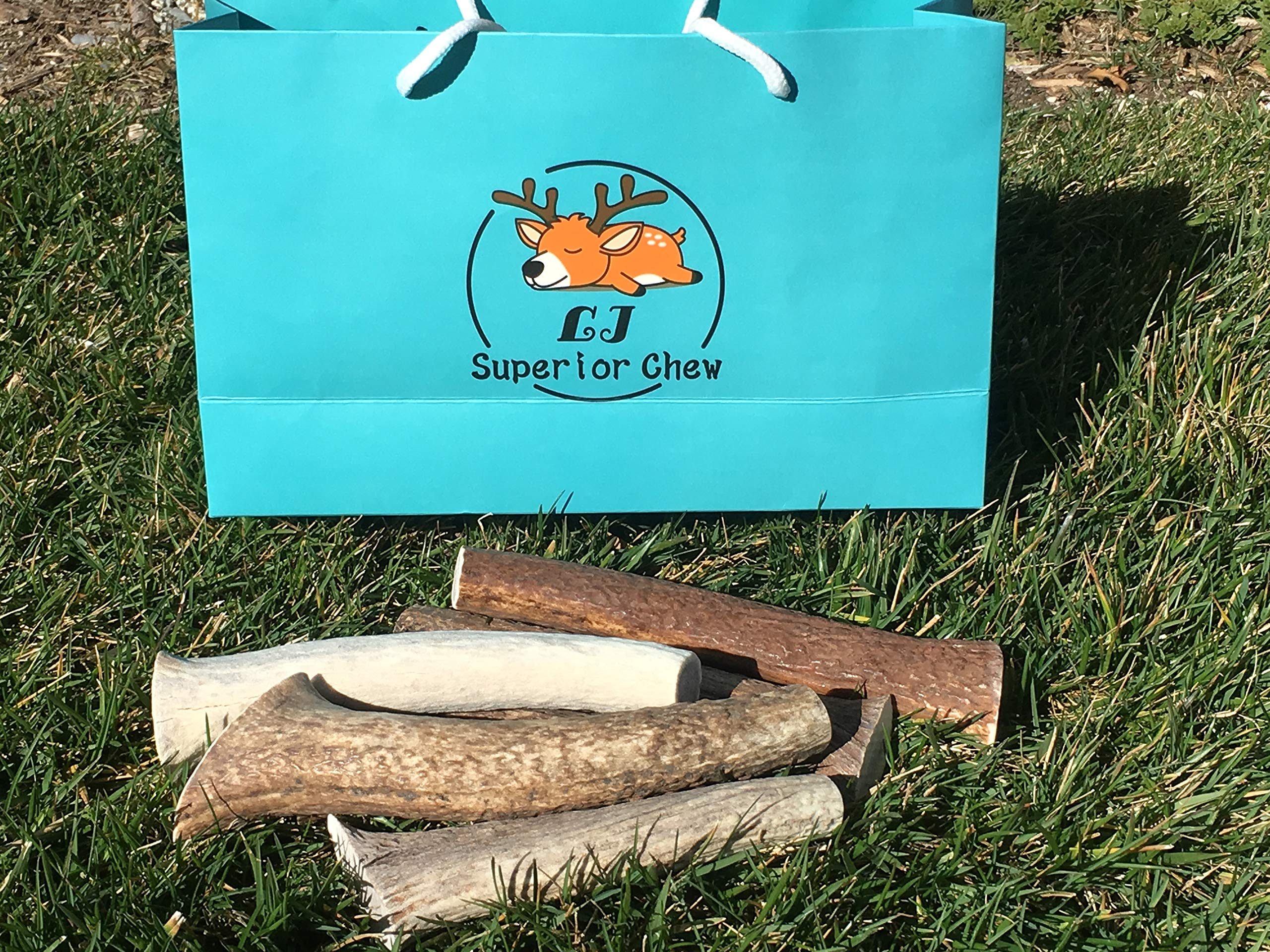 2 Pound Mix-Medium/Large-Extra Lbs Premium Elk & Deer Antler Dog Chew Inner Core by L J Superior Chew