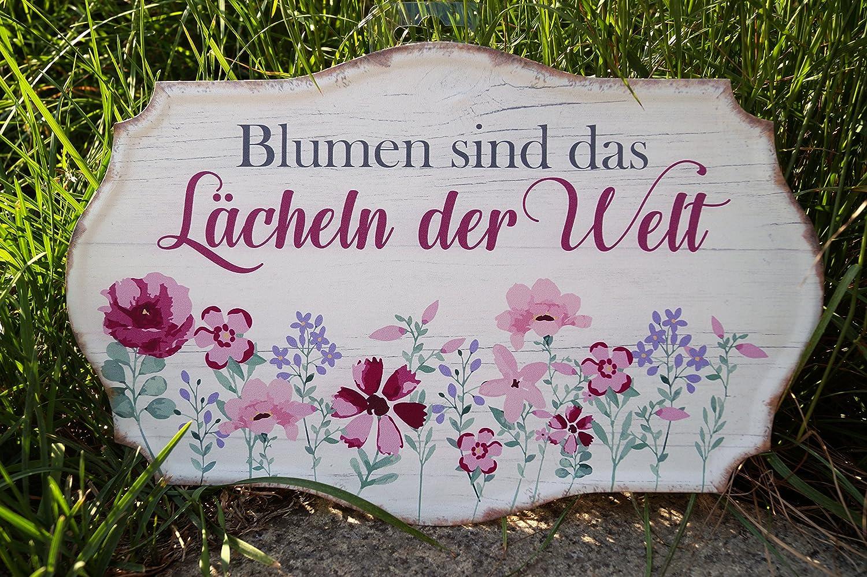 Blumen sind das L/ächeln der Welt G.Handwerk Metall Schild 30x19cm Pink//Creme