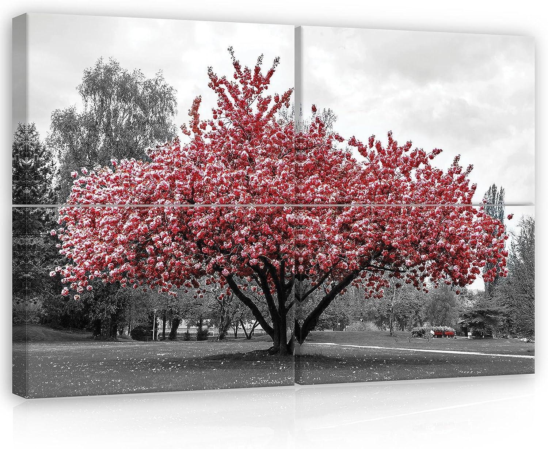 Welt-der-Träume Canvasbild 11801_PS10-MS - Lienzo Impreso con diseño de árbol, Bosque y Parque, Color Rojo, Lona, Rot,Schwarz und Weiss,Grau, S10 (120cm. x 80cm. (4x60x40)): Amazon.es: Juguetes y juegos