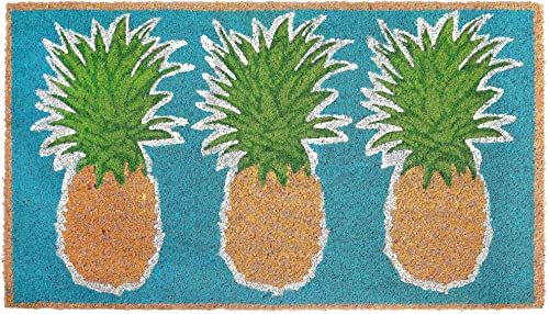 Liora Manne Natura Pineapples Outdoor Mat Aqua 24 x36