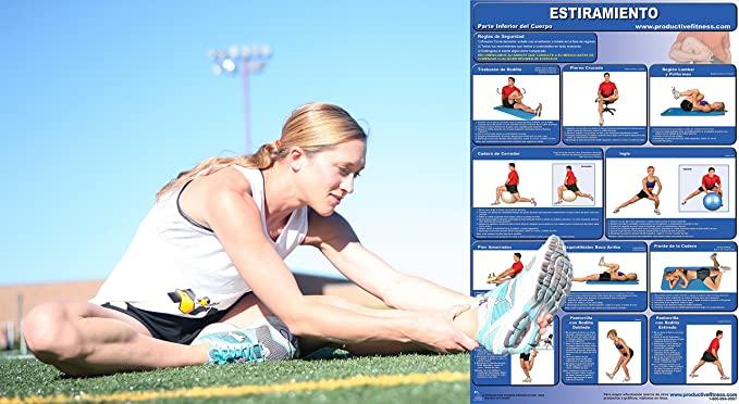 Amazon.com : Estiramiento/Parte Inferior del Cuerpo - Cartel - Stretching/Lower Body (Spanish Edition) 24