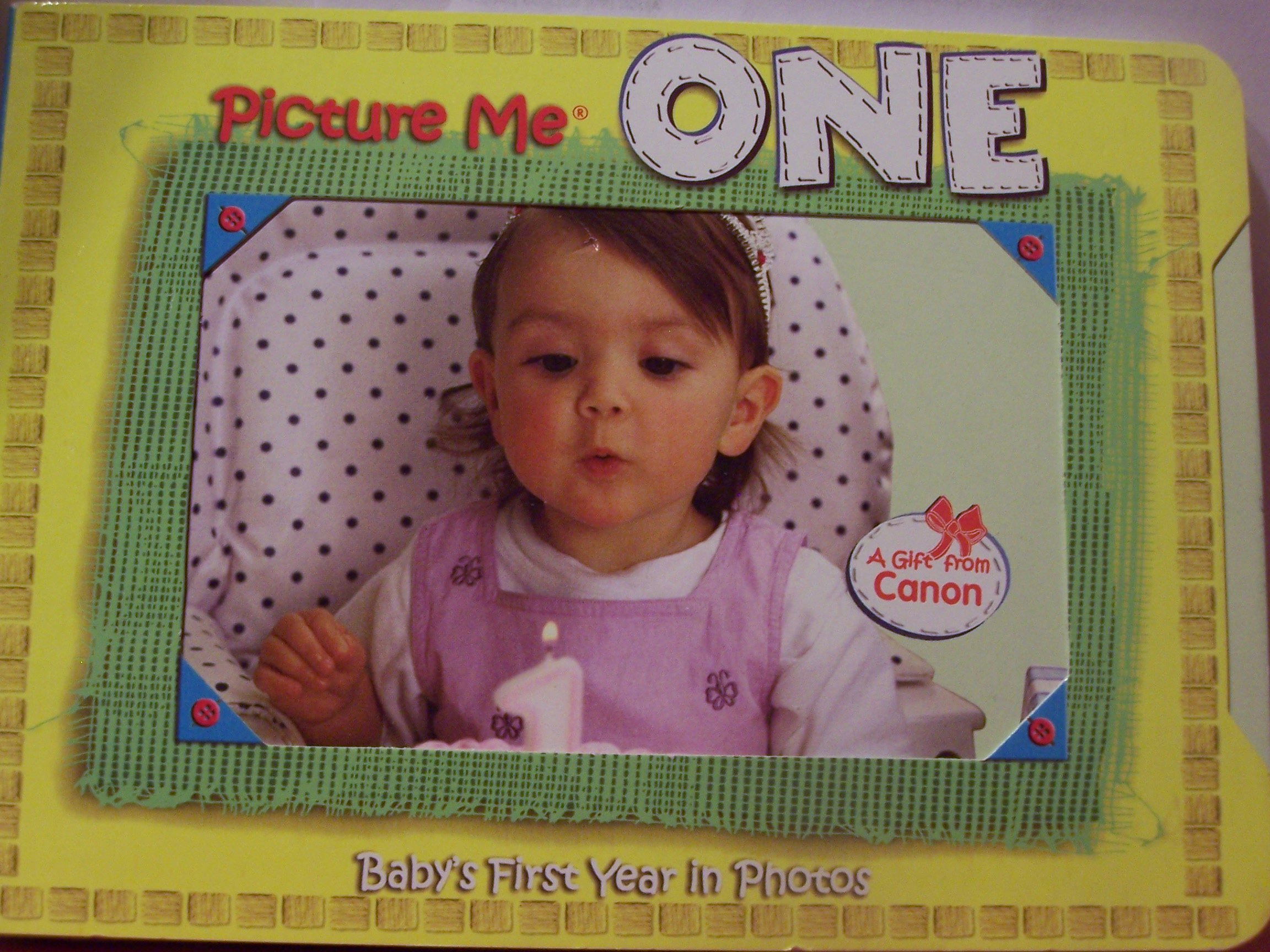Picture Me One Baby's First Year in Photos pdf