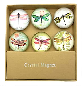 Value Arts Glass Dome Dragonfly Magnets, Assorted Set of 6