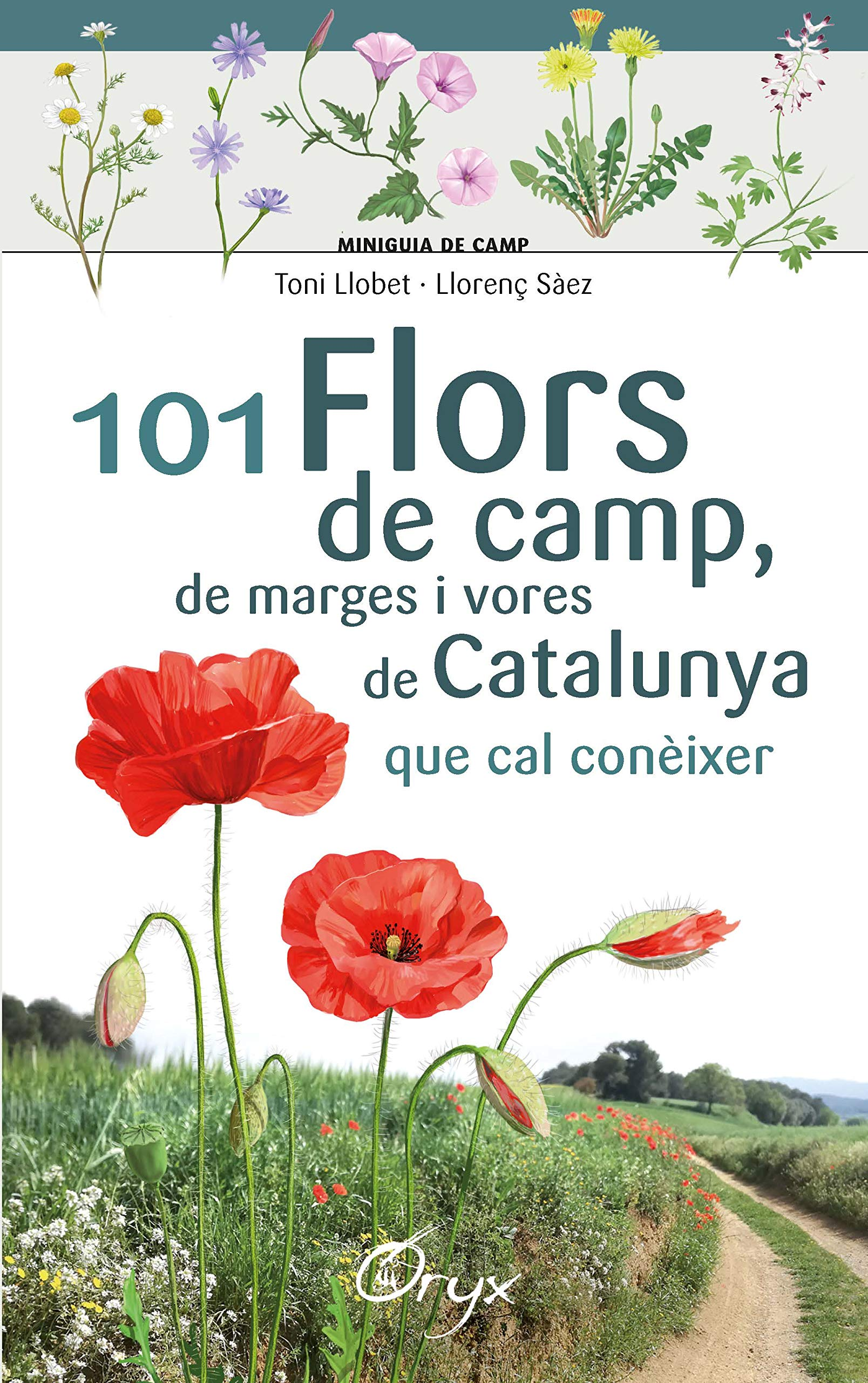 101 flors de camp, de marges i vores de Catalunya (Miniguia de camp)
