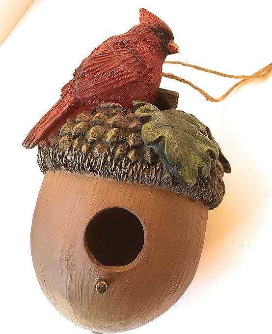 Bellota casa para pájaros con pájaro (Rojo o Azul Jay) en el Techo de casa Perca y Yute Hanger Resina: Amazon.es: Jardín