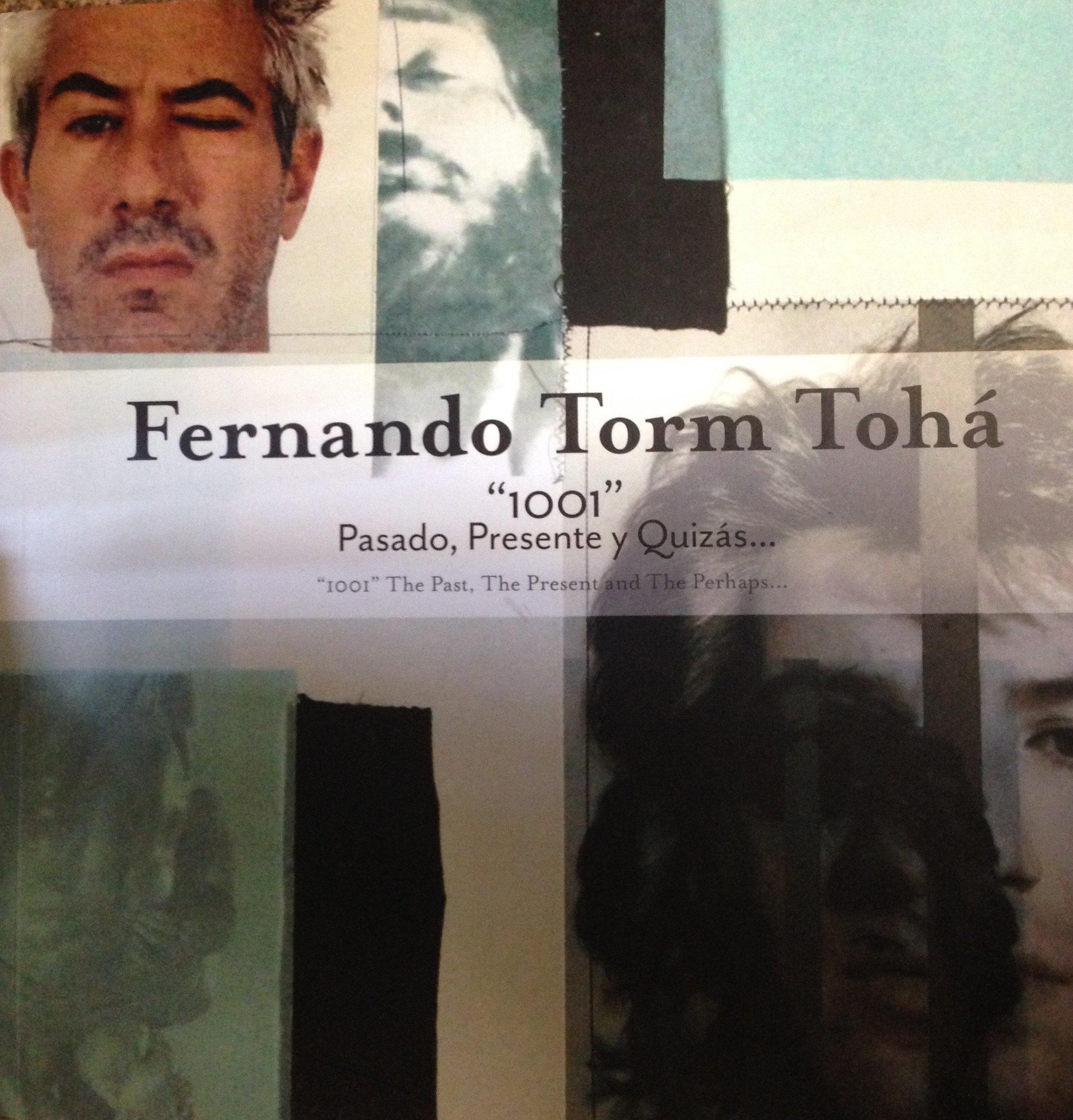 Download Fernando Torm Toha pdf epub