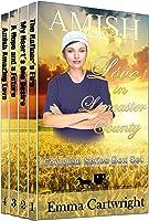 Upon A Spring Breeze (An Every Amish Season Novel