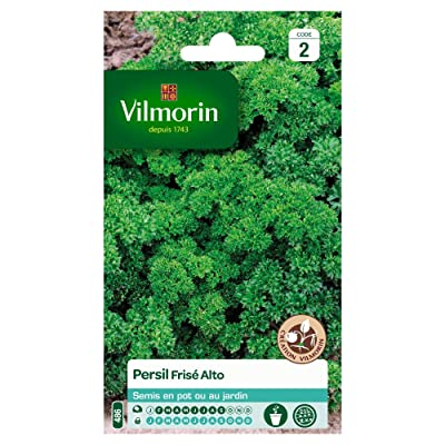 Seed Bag Parsley Frieze Alto Creation Vilmorin : Garden & Outdoor