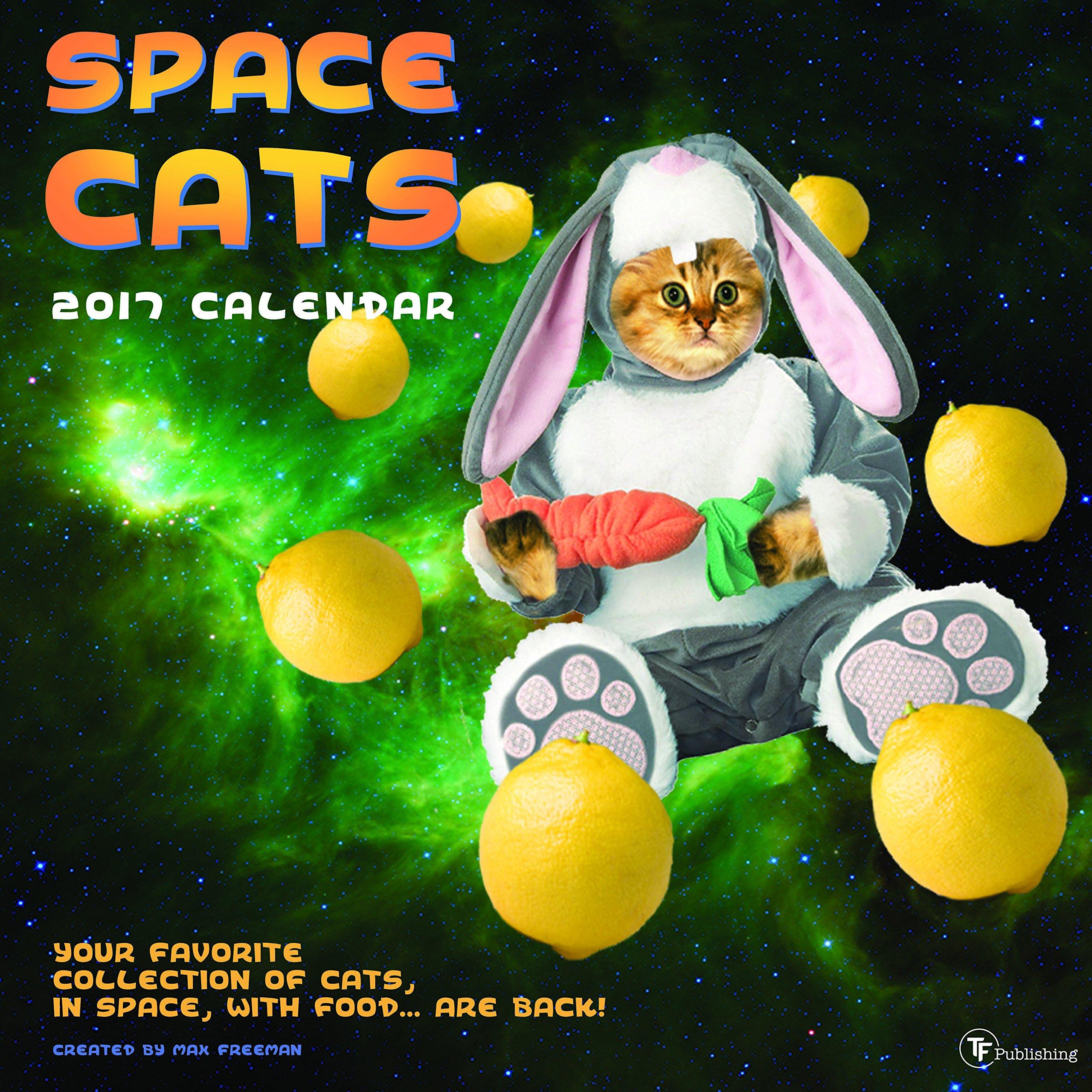 2017 Space Cats Wall Calendar TF Publishing 9781624387333