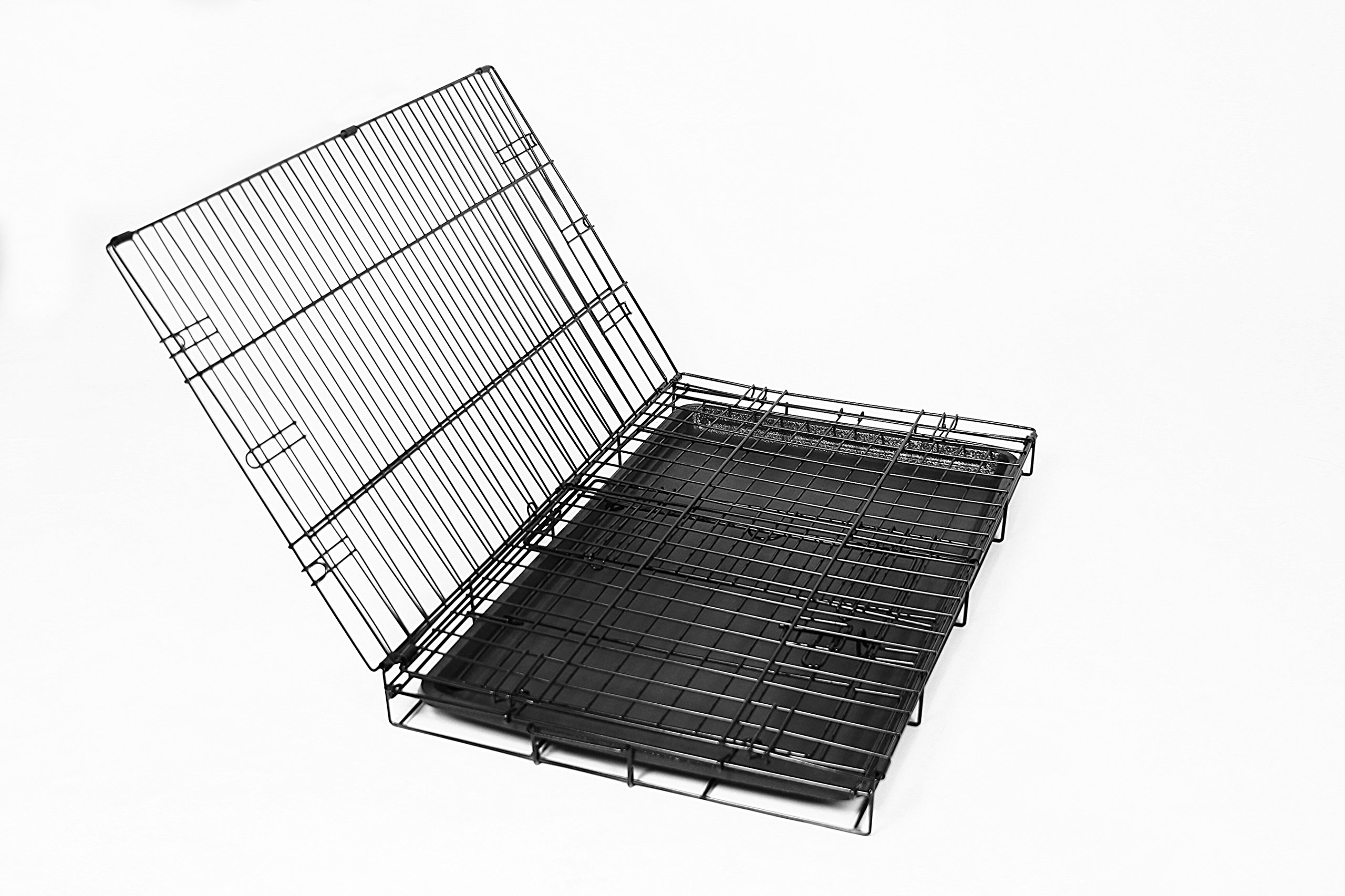 Carlson Pet Products Secure and Foldable Single Door Metal Dog Crate, Medium by Carlson Pet Products (Image #3)