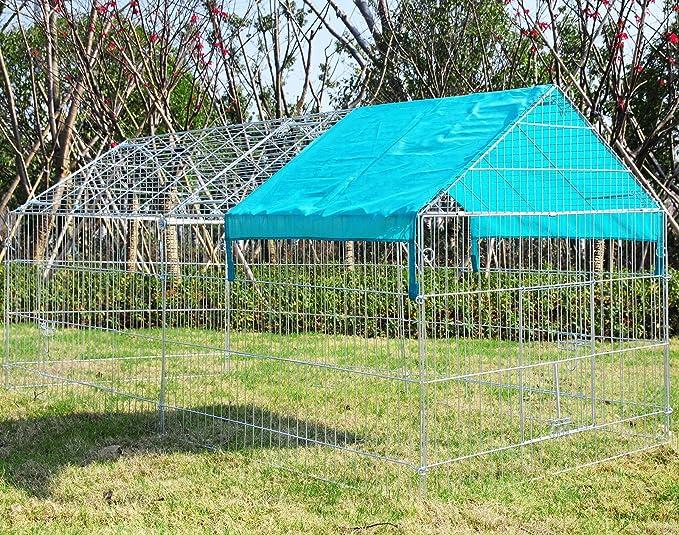 Desconocido Cachorro Parque Valla Perros Animales: Amazon.es: Productos para mascotas