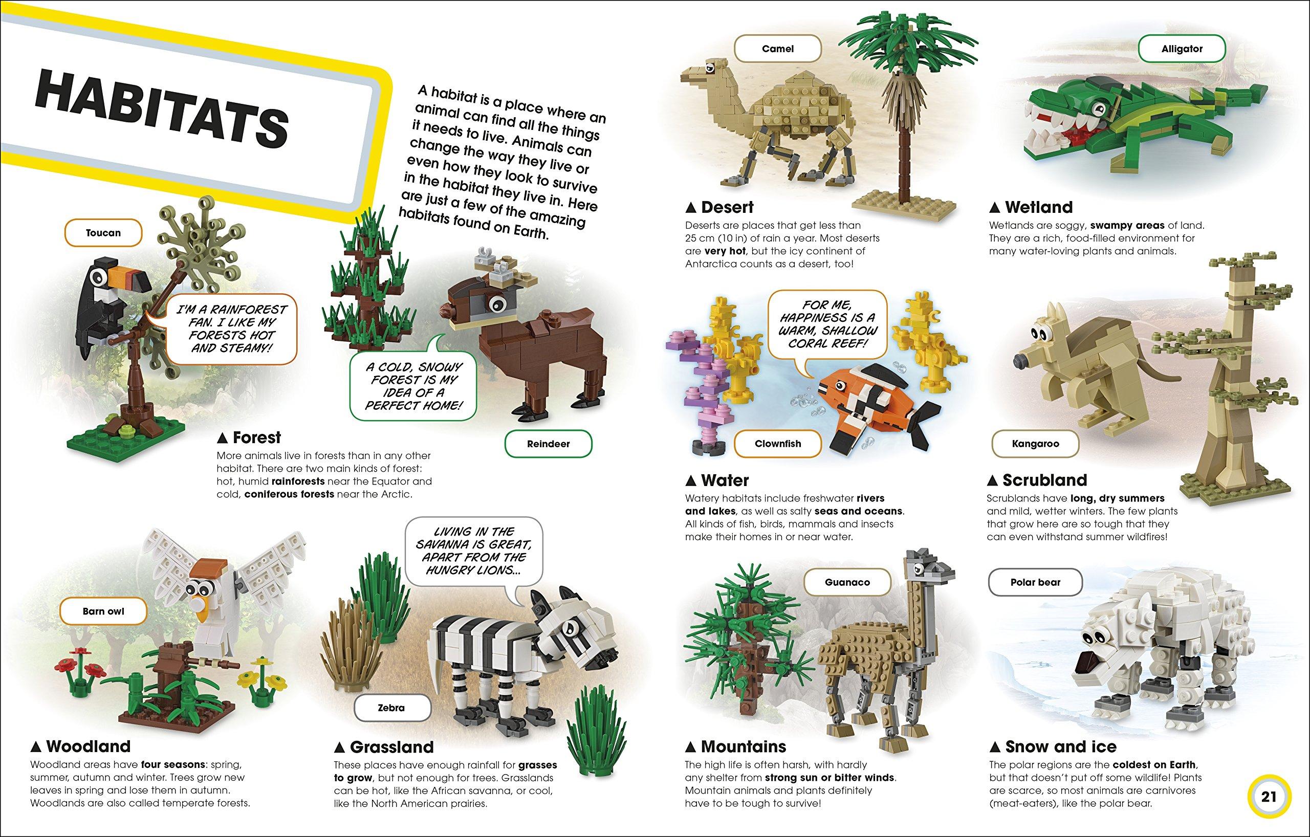 LEGO Animal Atlas: with four exclusive animal models: Amazon co uk
