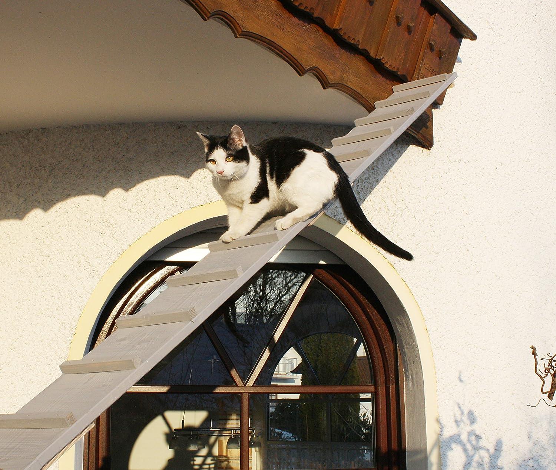 Escalera para gatos, escalera para el balcón, resistente a la intemperie, lacada: Amazon.es: Productos para mascotas