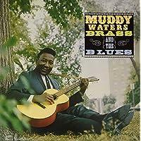 Muddy Brass & The Blues