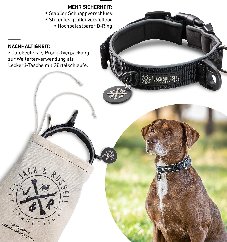 Jack & Russell Premium Collar de Perro Luna Reflectante y Neopreno ...
