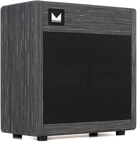 Morgan MVP23 Combo Twilight - Amplificador para guitarra eléctrica ...