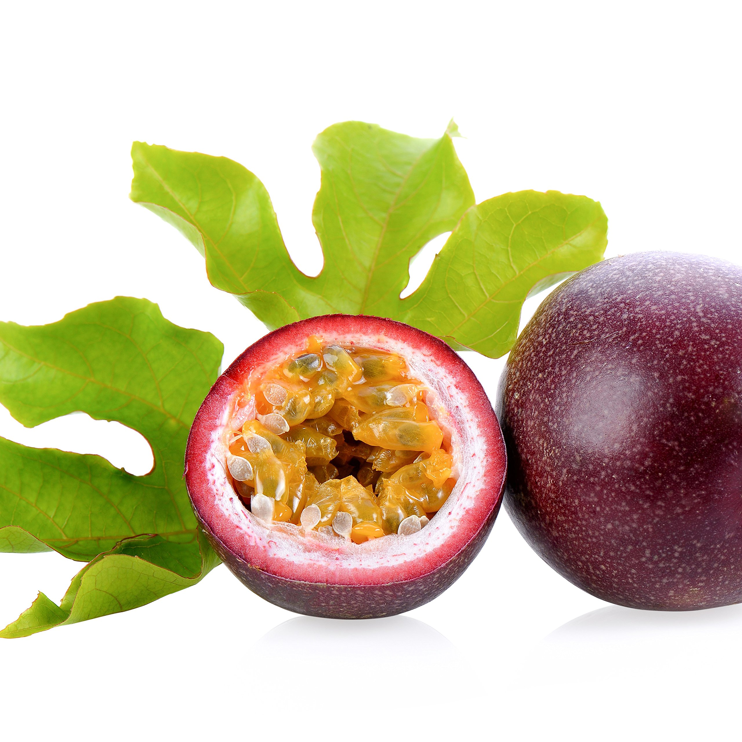 Purple Possum Passion Fruit Passiflora Edulis Live Plant