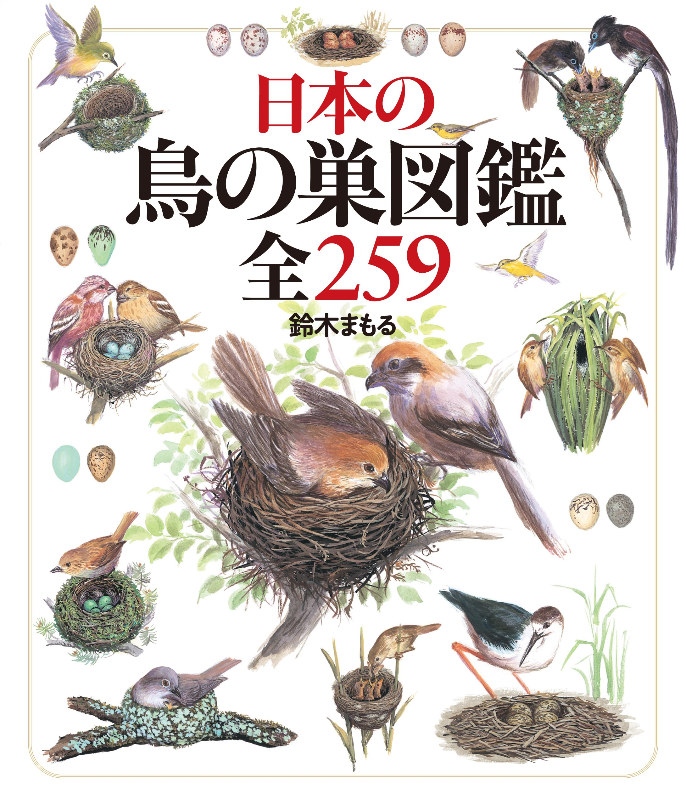 Read Online All 259 nest illustrated book of birds of Japan (2011) ISBN: 4035279005 [Japanese Import] ebook