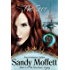 The Seer: Book 2 in The MacInness Legacy