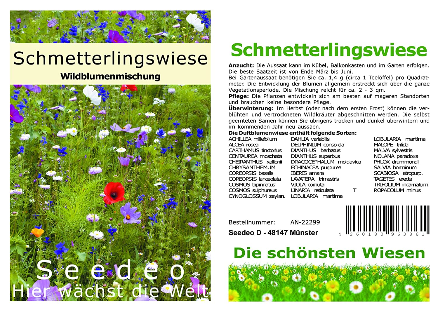 Seedeo Schmetterlingswiese