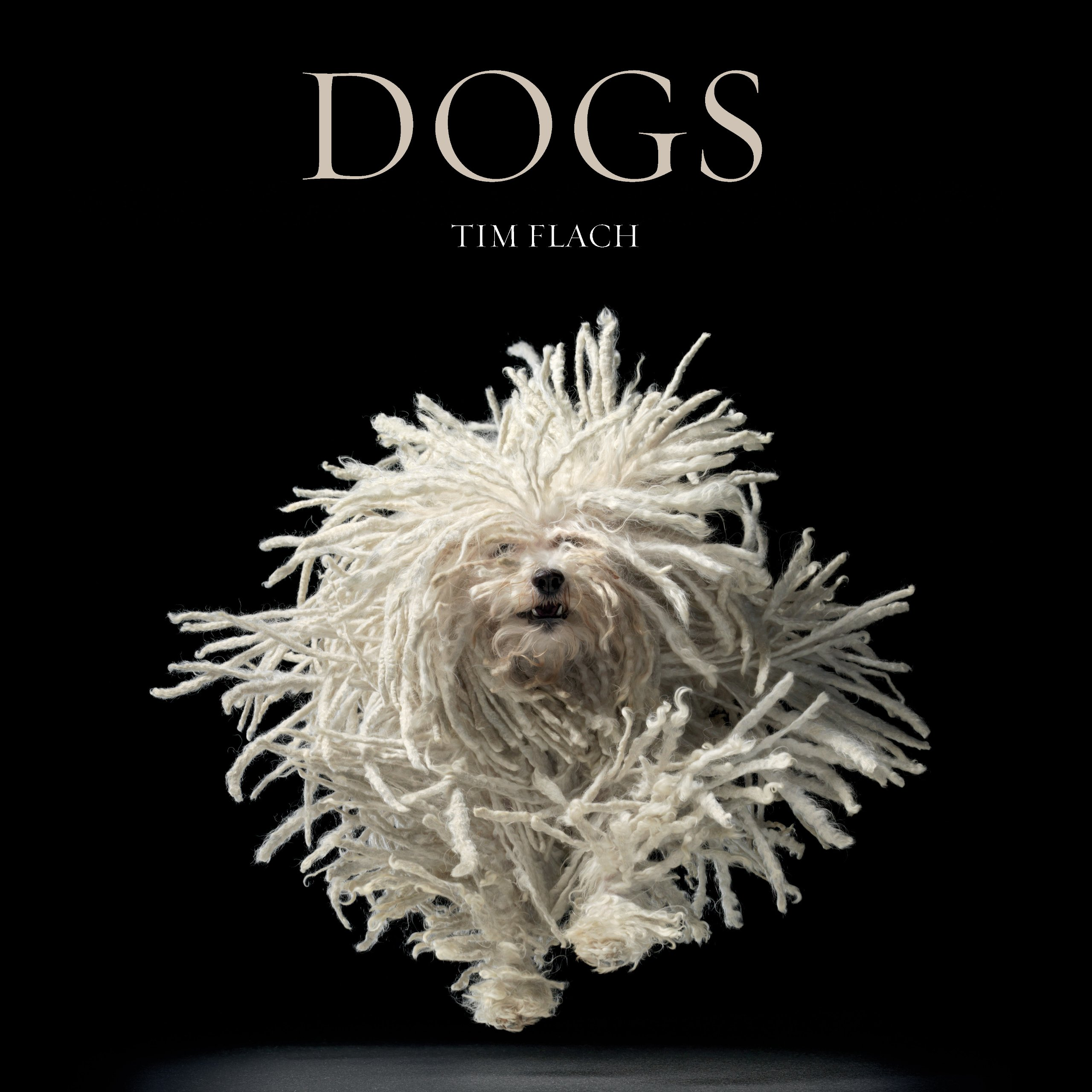 Amazon Dogs Lewis Blackwell Tim Flach Books