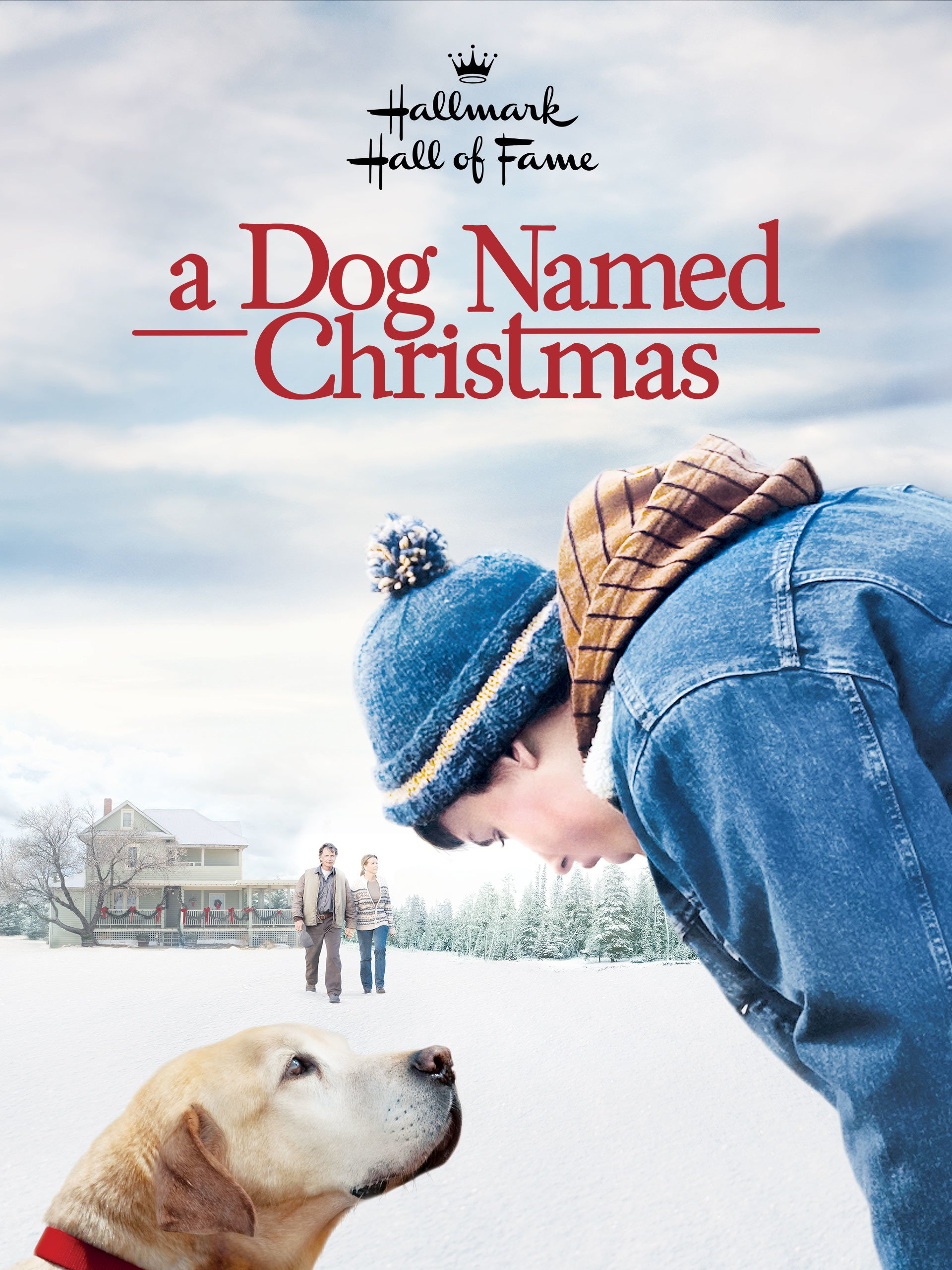A Dog Named Christmas.Amazon Com Watch A Dog Named Christmas Prime Video