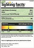 LIT-PaTH LED Flush Mount Ceiling Lighting