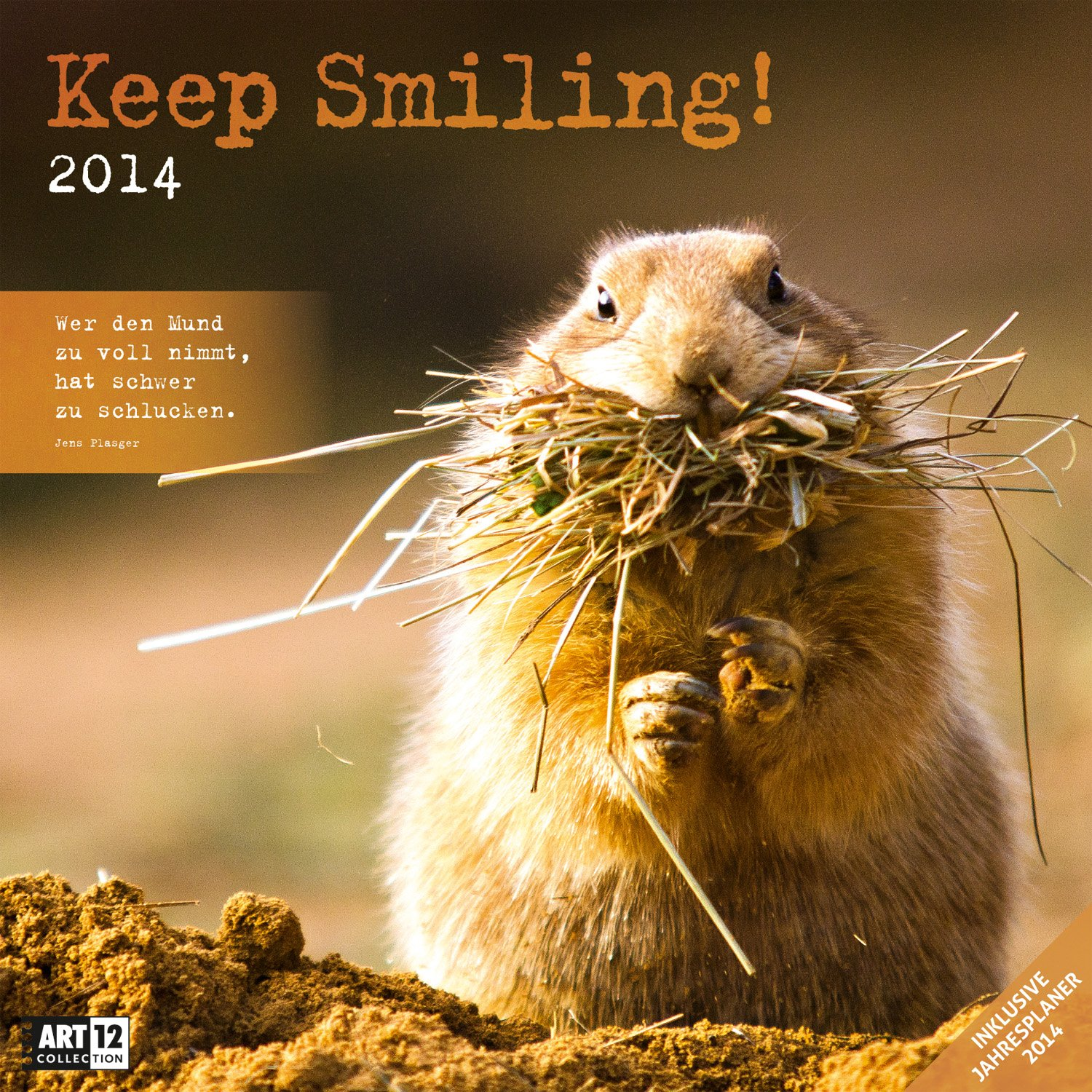 Keep Smiling 2014 Art12 Collection