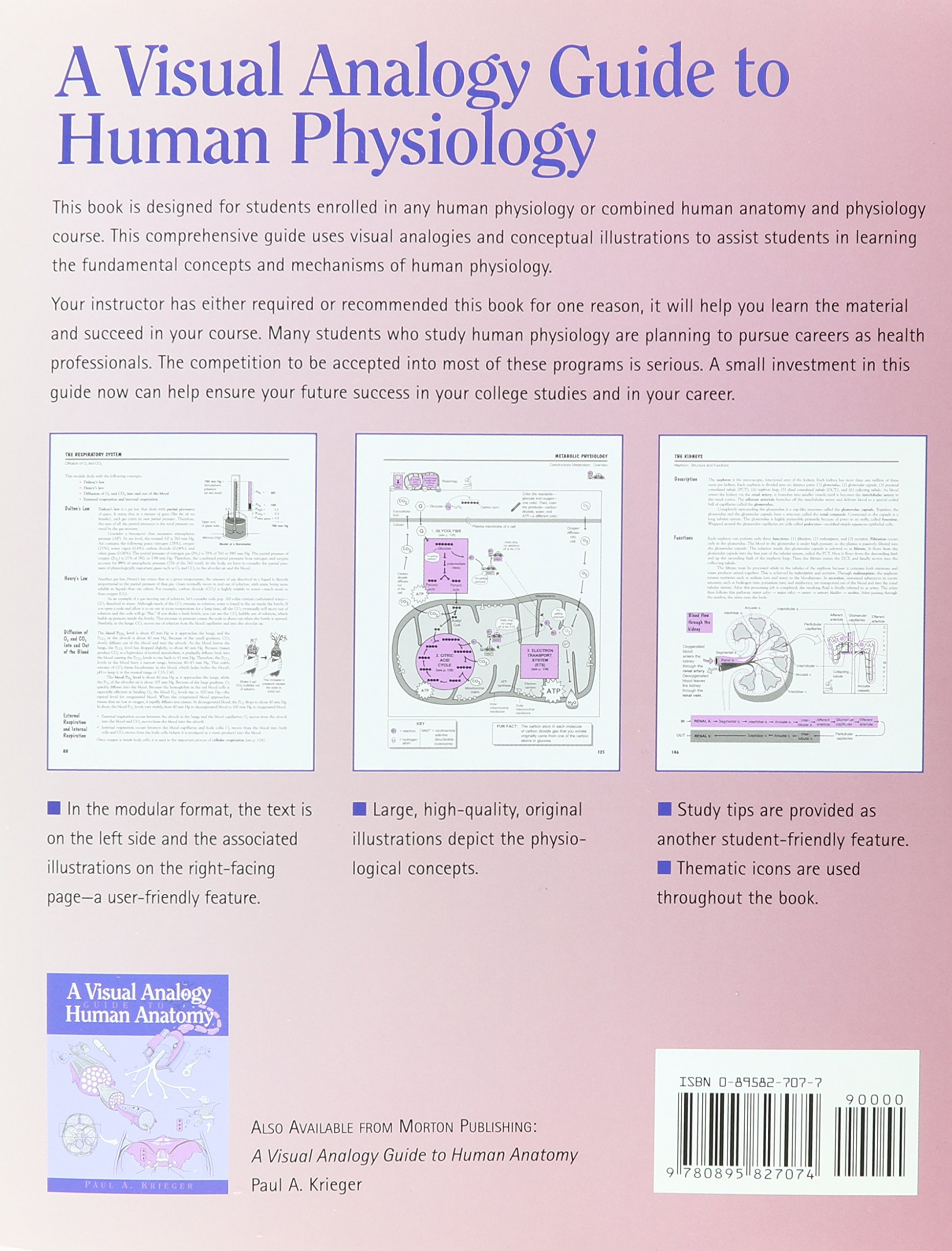 A Visual Analogy Guide To Human Physiology Paul A Krieger