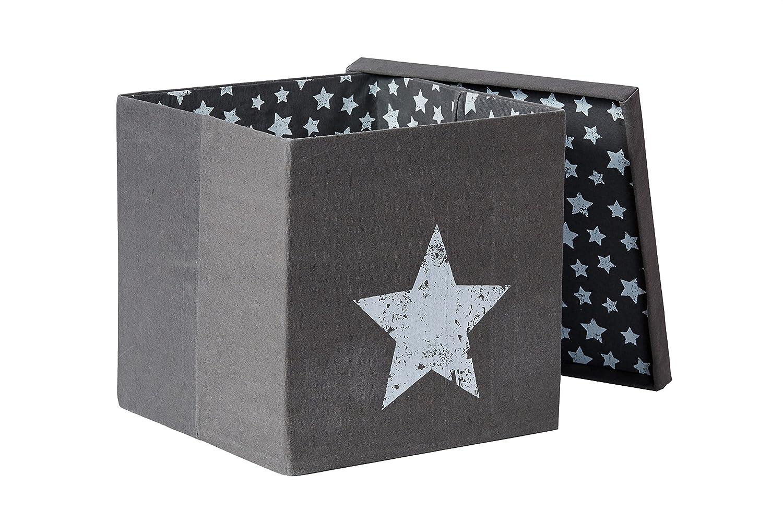 STORE.IT 672968 Ordnungsbox mit Deckel, 70% Canvas 30% Polyester ...