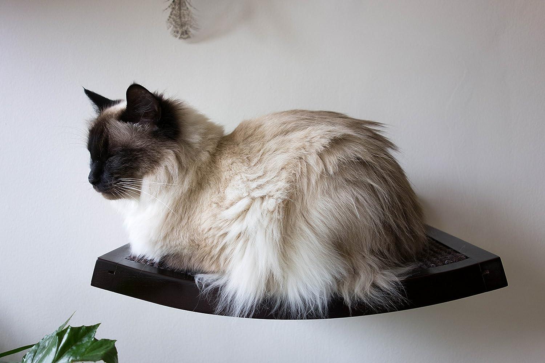 Art of Paws – Estante de pared para gatos con un elegante diseño tipo hamaca – un regalo que encantará a tu gato: Amazon.es: Productos para mascotas