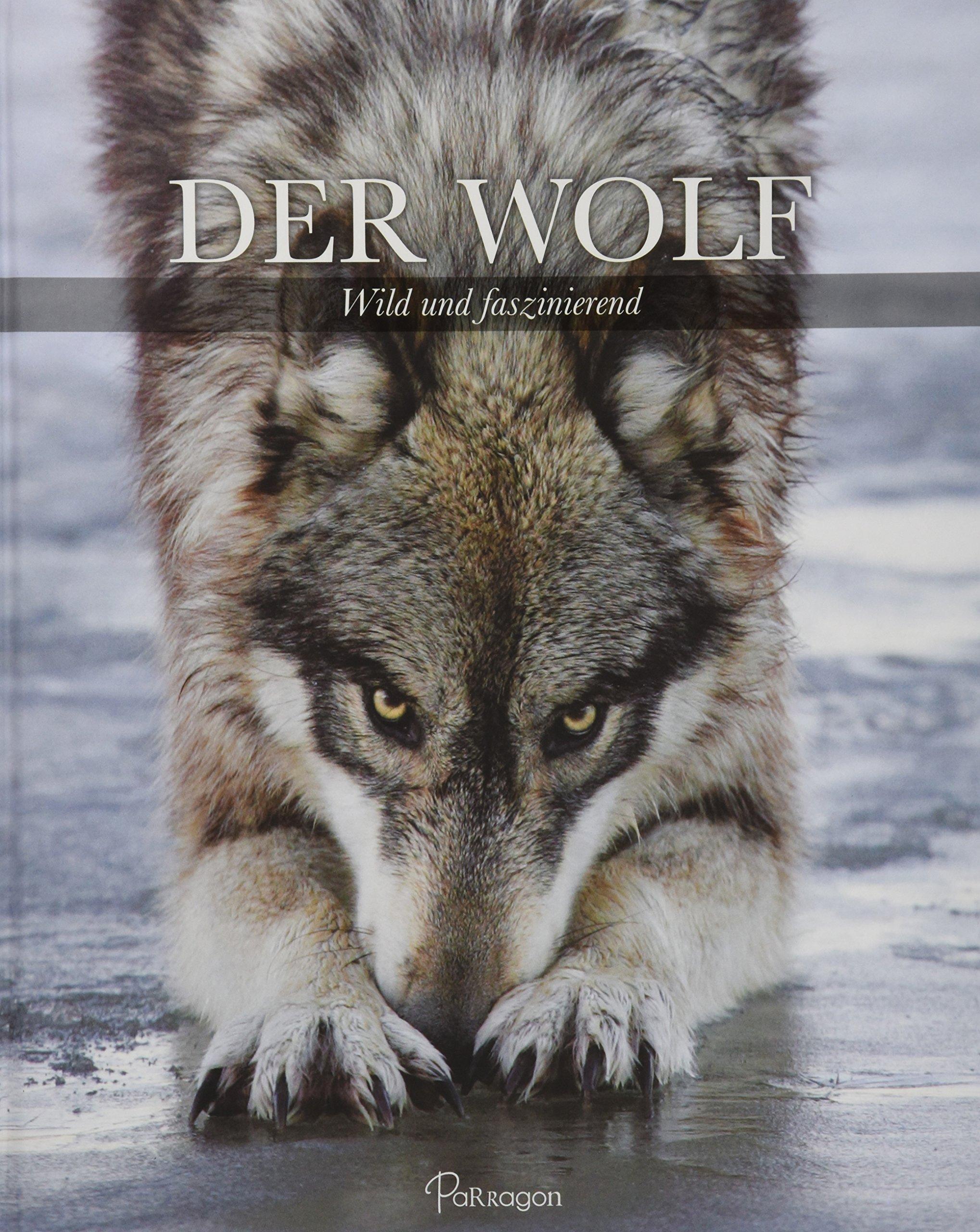 Der Wolf - 91VY 2BAjEAtL - Der Wolf: Wild und faszinierend