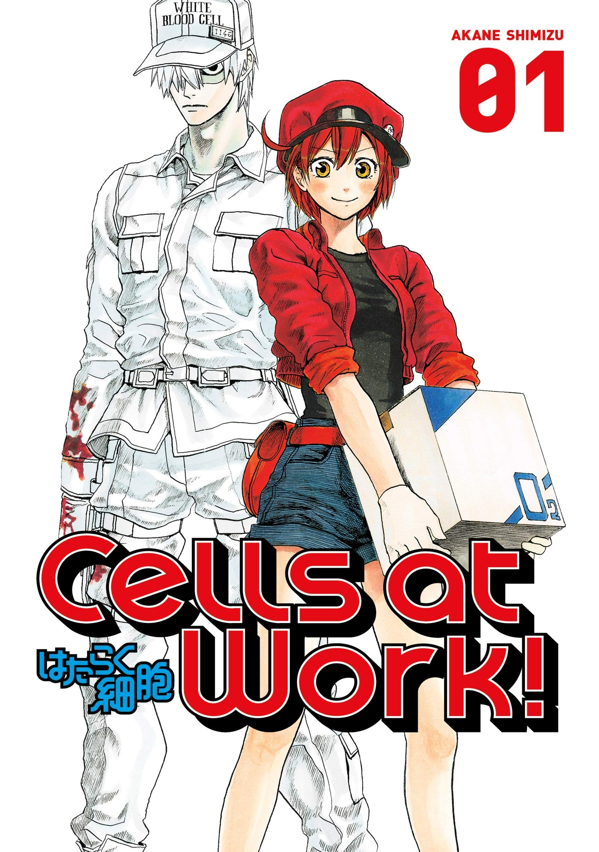 Cells At Work 1 Shimizu Akane 9781632363565 Amazon Com Books